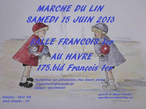 Marche-du-lin--76-.jpg
