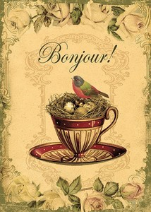 bonj oiseau sur tasse