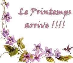 Bonjour-violettes-printemps