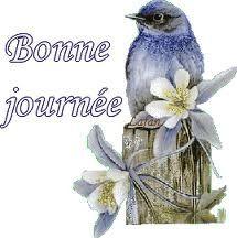 Bonne journée oiseau