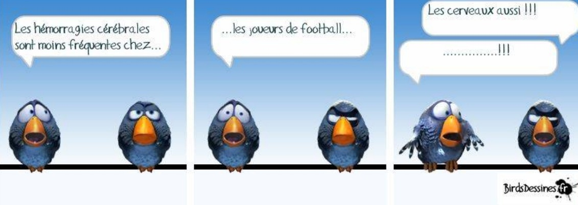 Les Zosios et le foot