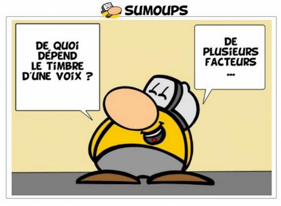 Sumoups Facteurs