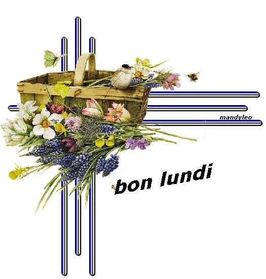 Bon lundi fleurs