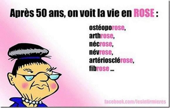 vie-en-rose-2014 humour