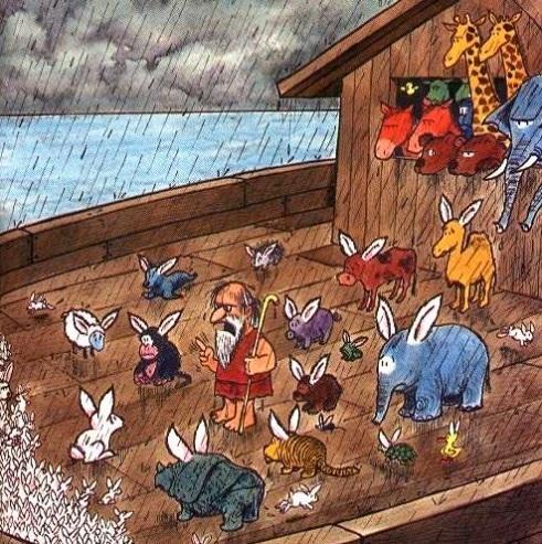 Humour l'arche de Noé