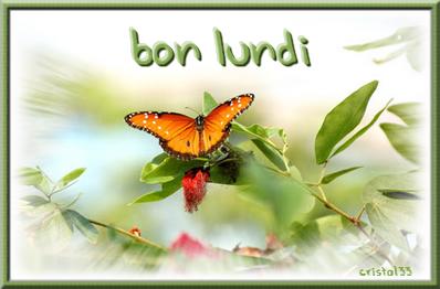 Bon lundi papillon gif