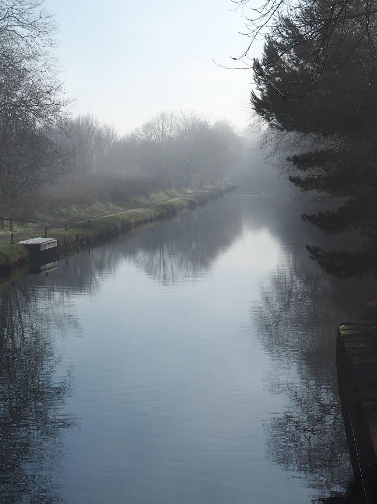 Brouillard 6