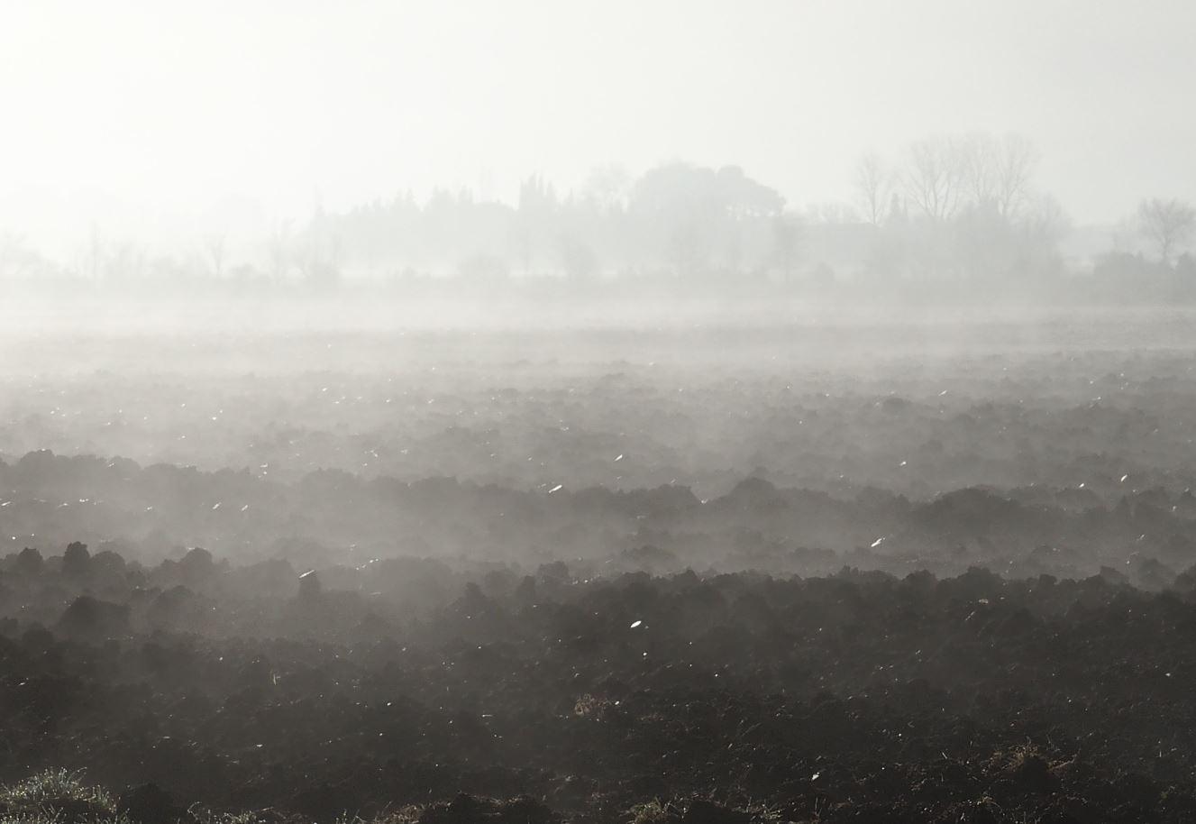 Brouillard 7