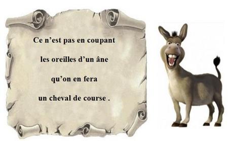 Humour l'âne
