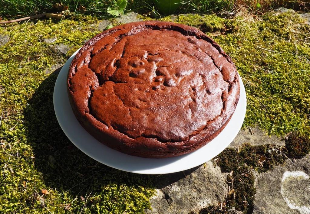 Gâteau chocolat lait ribot