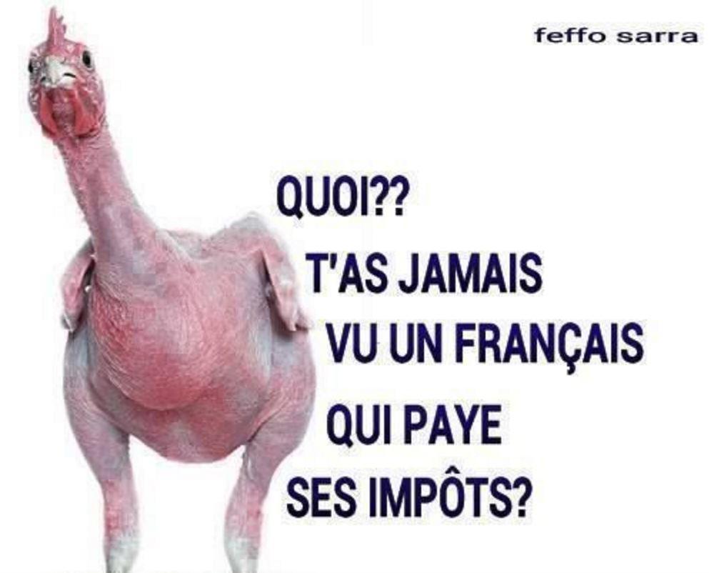 Humour impôts poulet