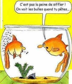 Humour poissons