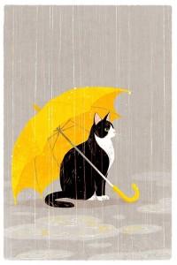 Chat sous la pluie 2 gif