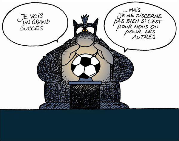 Humour Le Chat et le foot gif