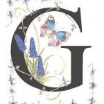 G papillon gif