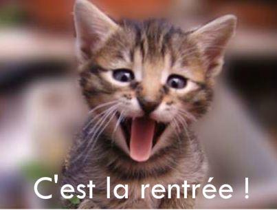 chat-cest-la-rentree