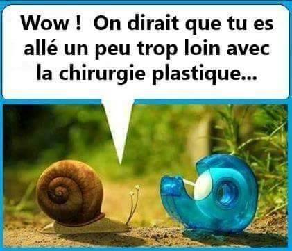 humour-les-escargots