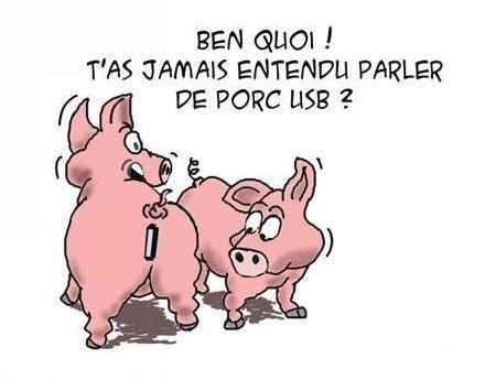humour-porc-usb