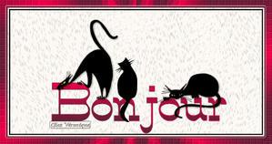bonjour-chats-gif