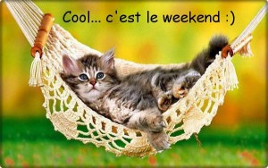 Chat bon-week-end gif