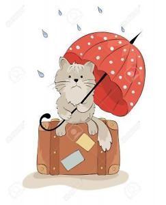 Chat sous parapluie gif