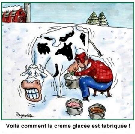 Humour Crème gacée