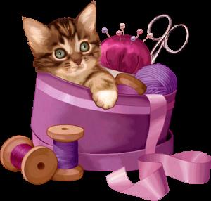 chaton-couture gif