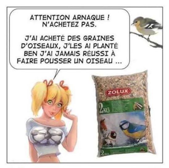 Humour Graines pour oiseaux
